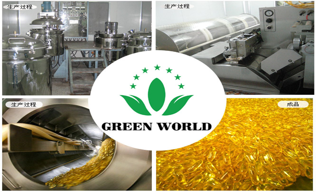PEMBUATAN DEEP SEA FIH OIL SOFTGEL GREEN WORLD