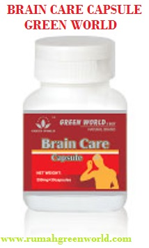 brain care capsule rumah green world